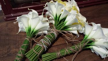 White & Yellow Mini Calla Lilies