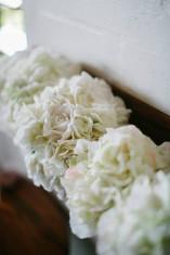 Tara's White Hydrangea
