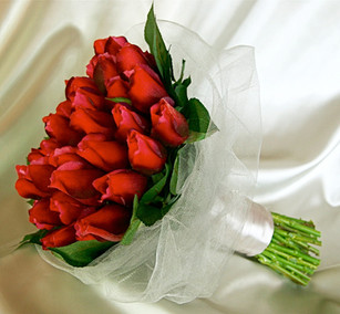 Red Rose Buds