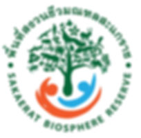 SBR logo.jpg