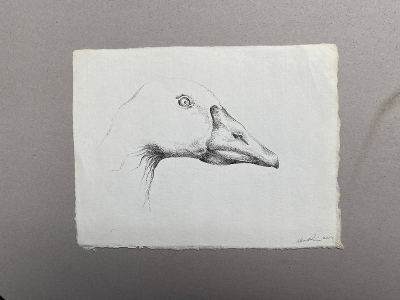 Mister Goose