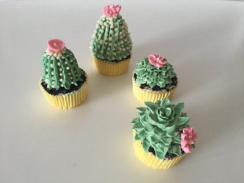 6 Succulent cupcakes