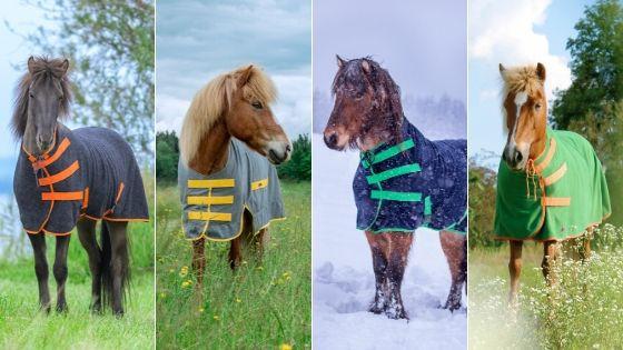 Islandpferde Decke, Abschwitzdecke, Regendecke, Pferdedecke aus Wolle