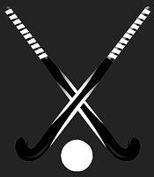 Hockey_edited_edited.jpg