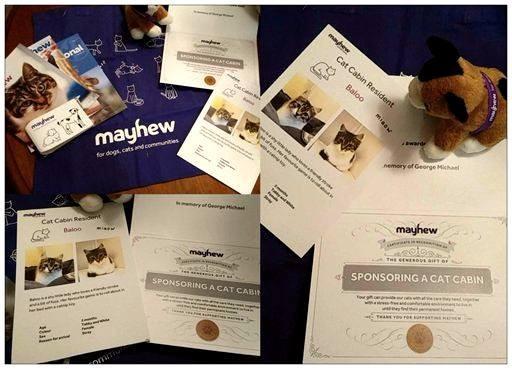 GMLP Sponsorship at Mayhew, UK