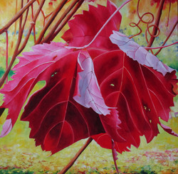 2 red leaves in a vineyard