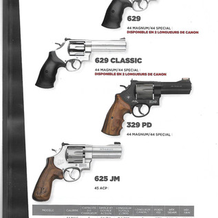 Smith & Wesson 22.jpg