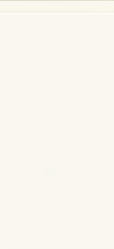 Laqué blanc alpin mat
