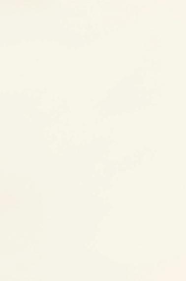 Coloris Blanc Mat Soft