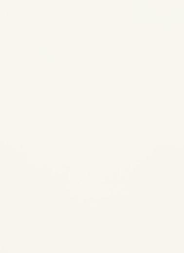 Laque, blanc alpin mat