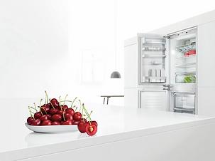 Bosch réfrigérateurs combinés encastrabl