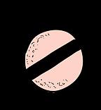 Zeichenfläche_5_Kopie_2_3x-8.png