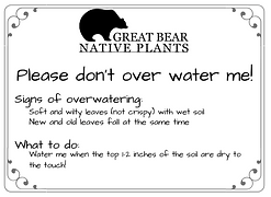 Don't Overwater Me! 1_edited.png