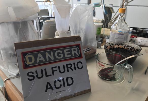 Sulfuric acid seed treatment