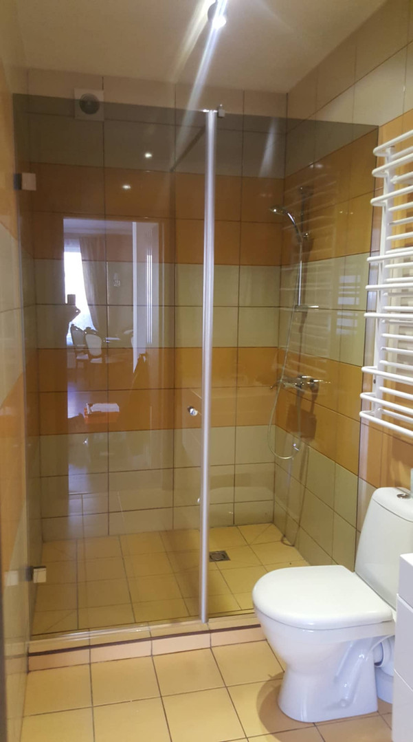 A glass shower with a verdant door.