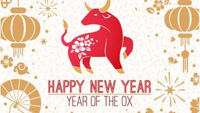 Guònián hǎo 过年好!Happy Chinese New Year!