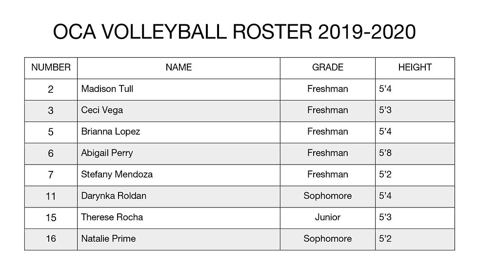 Volleyball%20Roster_edited.jpg
