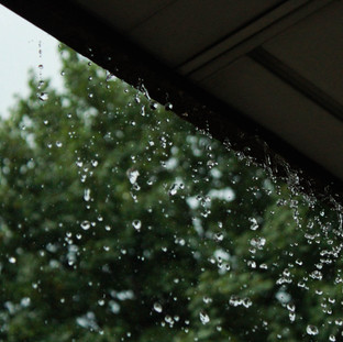 Rain - A photo series 1/3