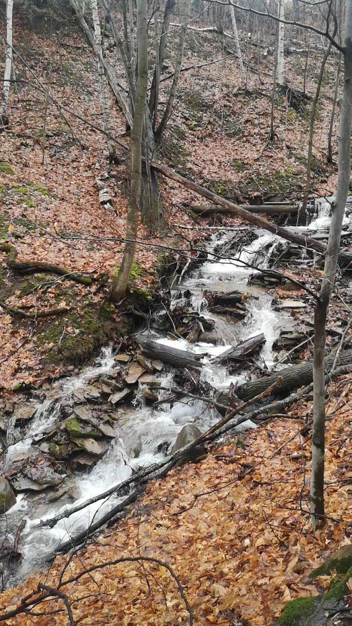 Blue mountain cascade falls2