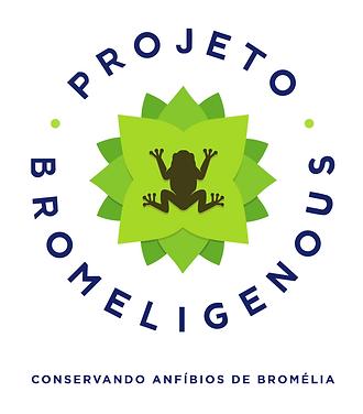 vetores logo com slogan EM CORES.png