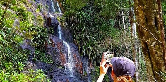 Gold-Coast-Hinterland-walk-Queensland-3.