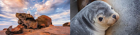 kangaroo-island-walking-holiday-3.jpg