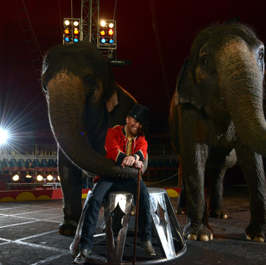 elephant-hug-1.jpg