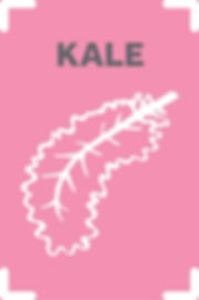 Kale_scaled.jpg