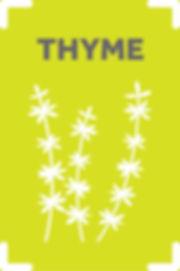 Thyme_scaled.jpg