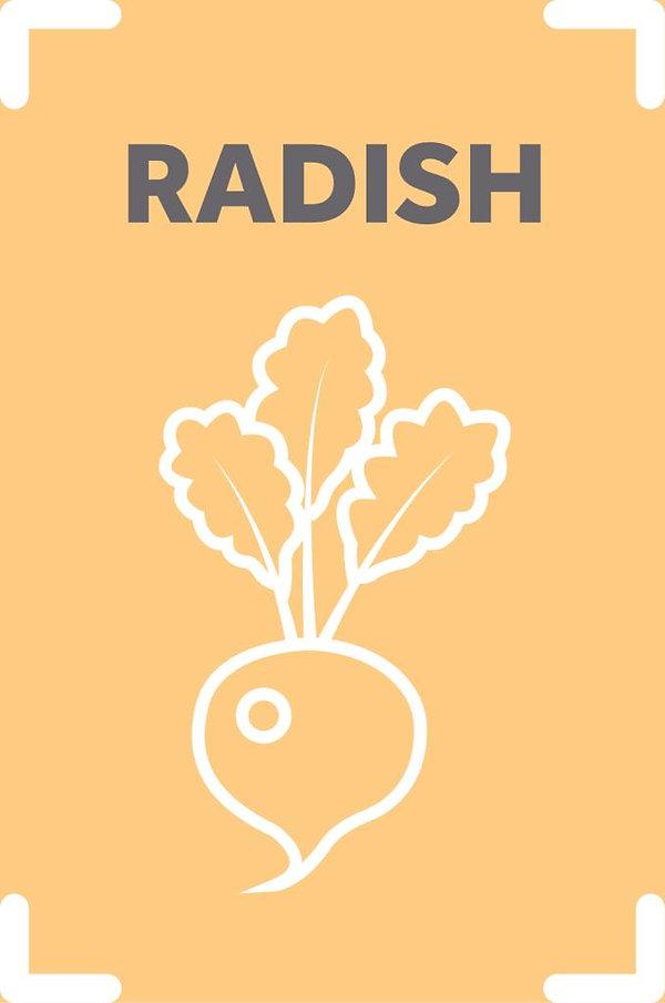 Radish_scaled.jpg