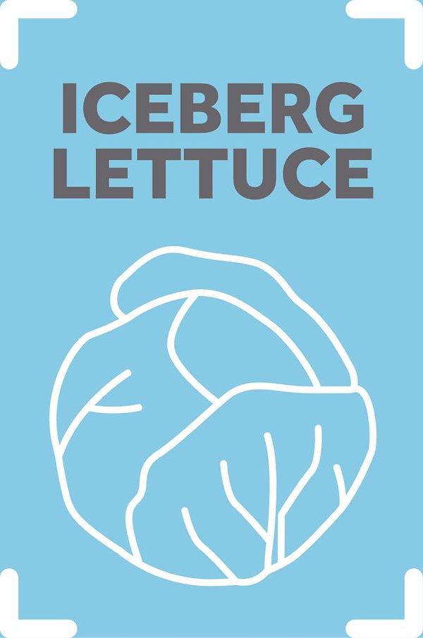 IcebergLettuce_scaled.jpg
