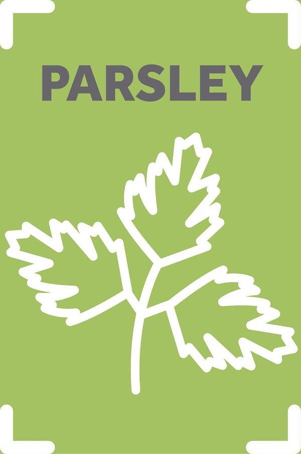 Parsley_scaled.jpg