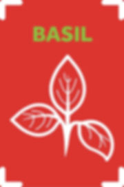 Basil_scaled.jpg