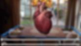 AHA heart AR.png