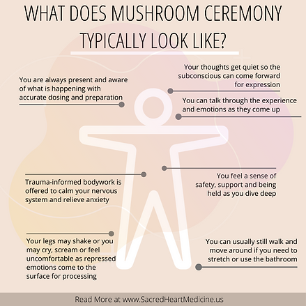 What mushroom ceremony is really like