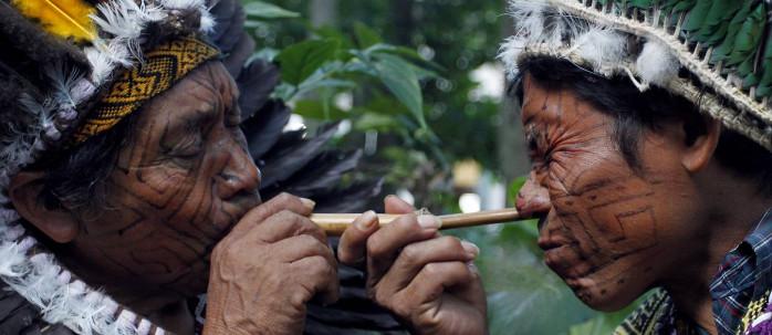Rapé (Sacred Tobacco)