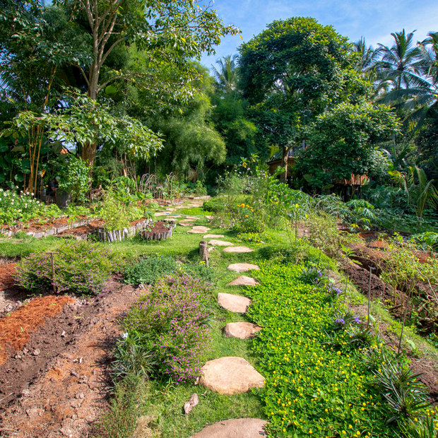 Garden Dreams.jpg