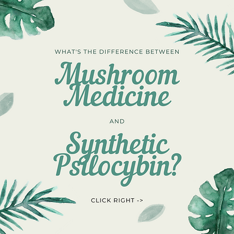 Natural versus Synthetic 1.png