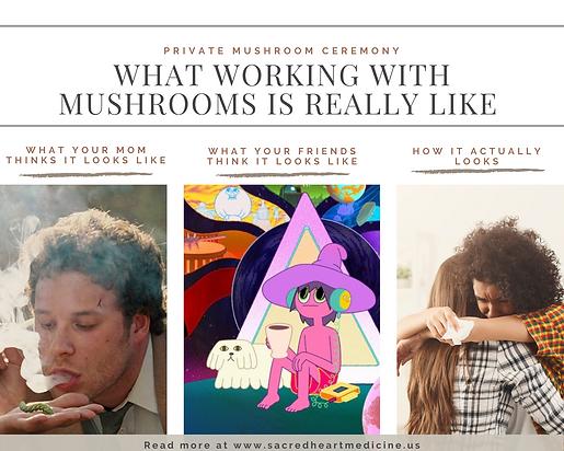 How mushroom ceremony really looks