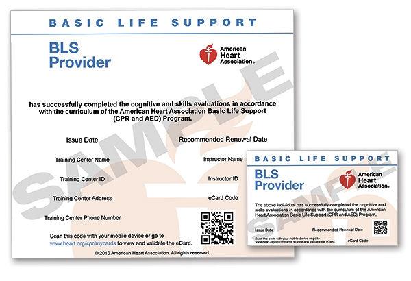 cpr lifesaver card lastminute.jpeg