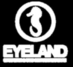 eye_logo.png