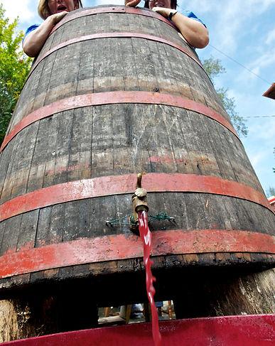 agriturismo fattoria celle wine tasting