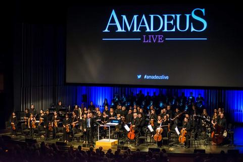 Amadeus Live - LA Opera