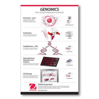 Genomics_Image.jpg