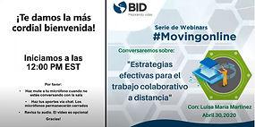 9 BID 5.jpg