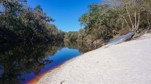 Suwannee-River-Wilderness-Trail.jpg