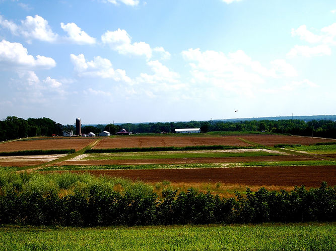 farm overlook.jpg
