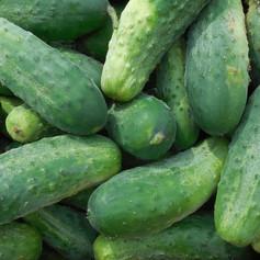 pickles_edited.jpg