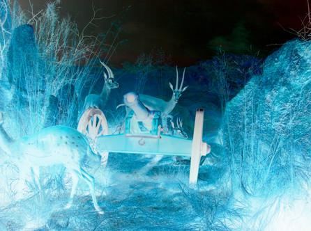 """ELSWHERE """"KRIEG IM BUSCH"""" 2011"""