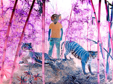 "ELSEWHERE ""ELEPHANT BOY"" 2011"